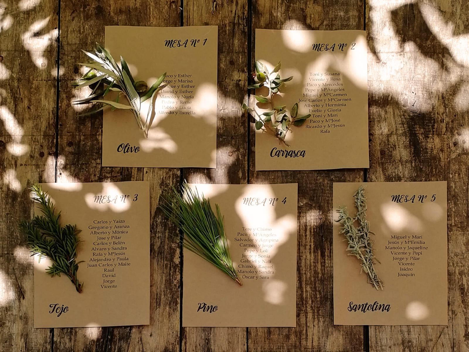 boda-civil-rupestre-personalizada-tonos-morados-SJ-06_HIDROJARDIN-Bañeres