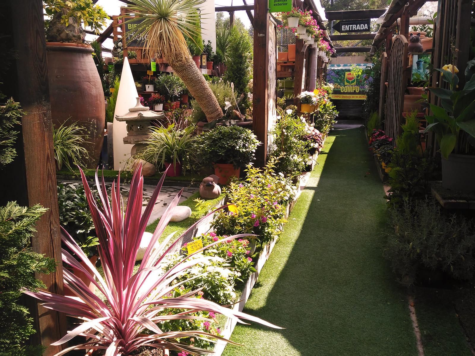 centro-jardineria-garden-invernadero-artesanal-madera-fuente-07_HIDROJARDIN-Bañeres