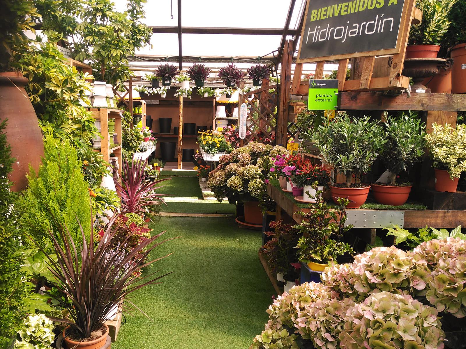 centro-jardineria-garden-invernadero-artesanal-madera-fuente-08_HIDROJARDIN-Bañeres