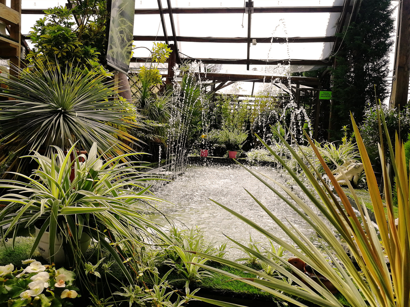 centro-jardineria-garden-invernadero-artesanal-madera-fuente-11_HIDROJARDIN-Bañeres