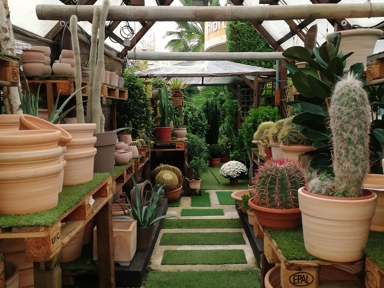 centro-jardineria-garden-invernadero-artesanal-madera-fuente-15_HIDROJARDIN-Bañeres