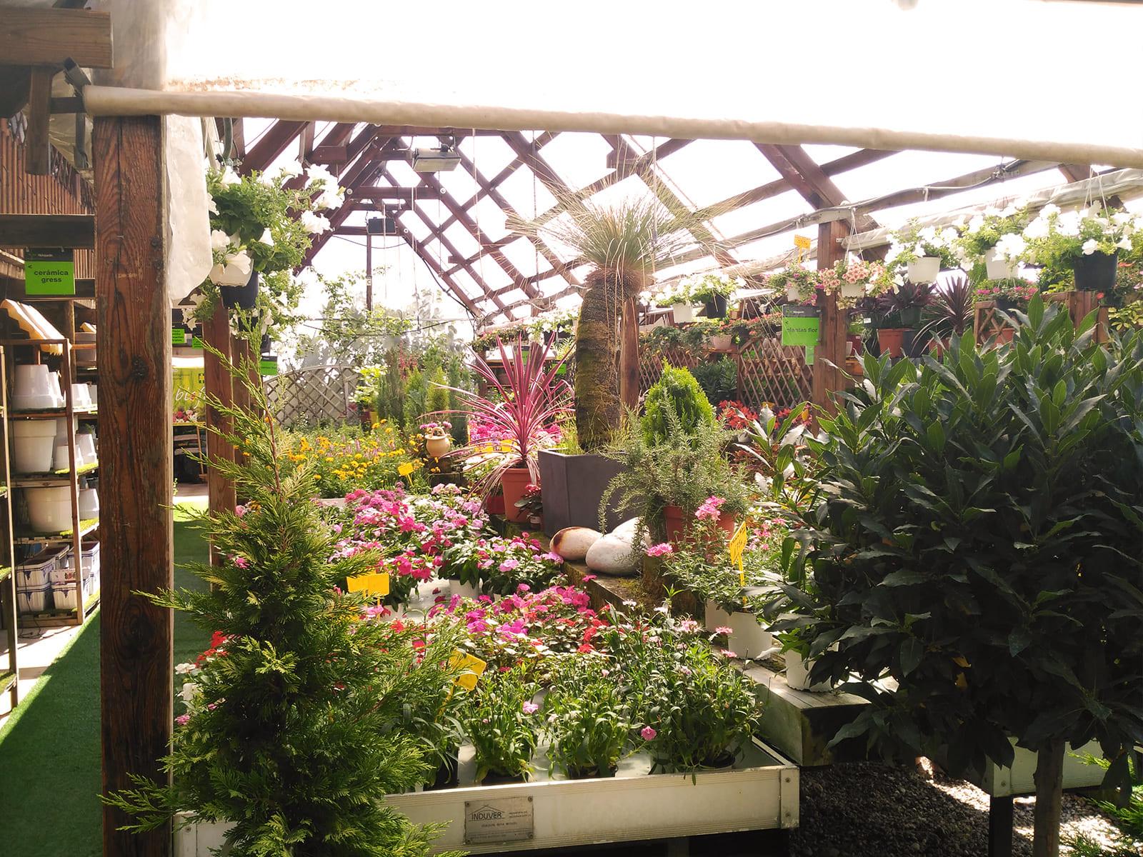 centro-jardineria-garden-invernadero-artesanal-madera-fuente-17_HIDROJARDIN-Bañeres