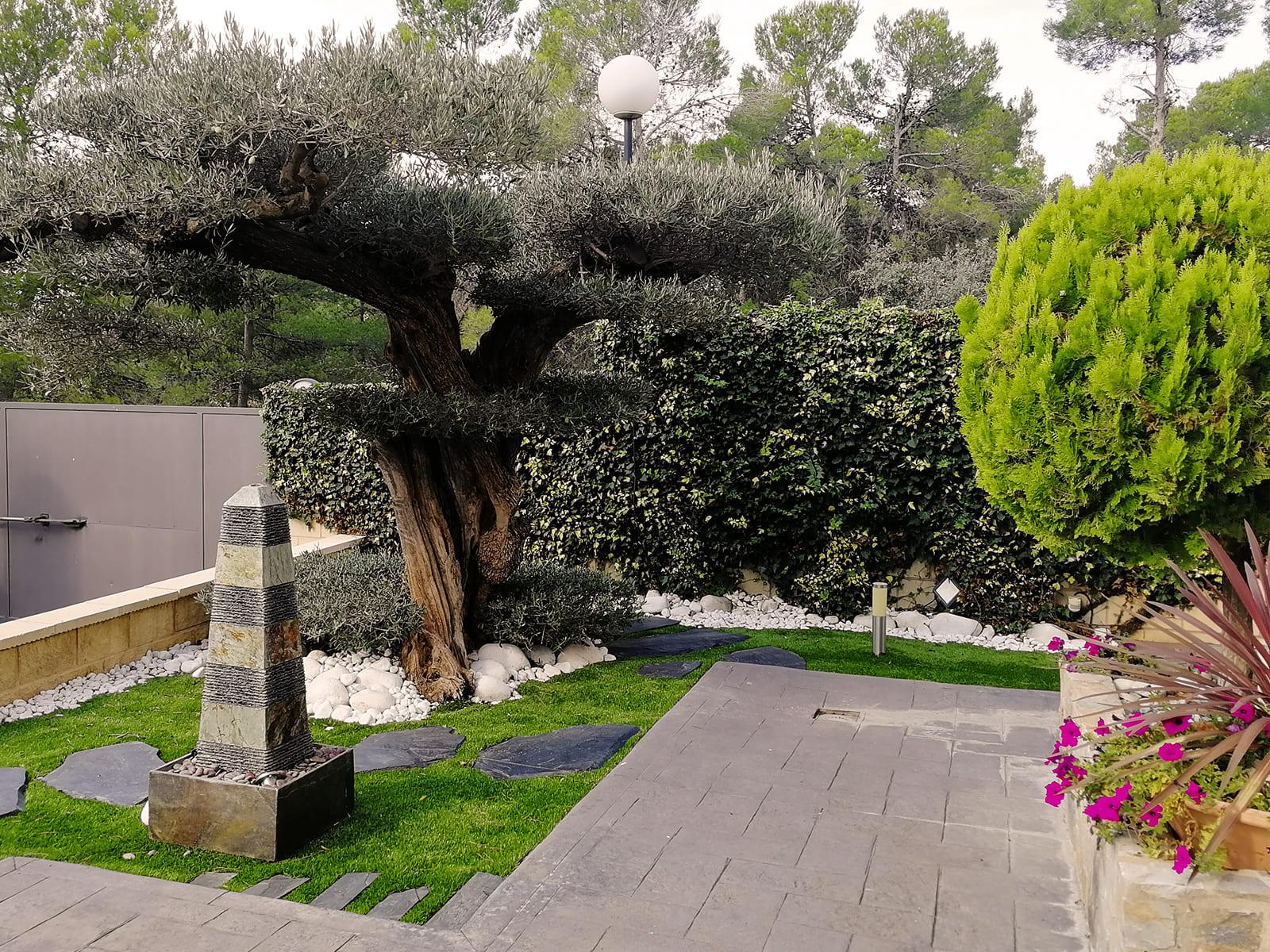diseño-jardines-espacio-olivo-MM-03_HIDROJARDIN-Bañeres