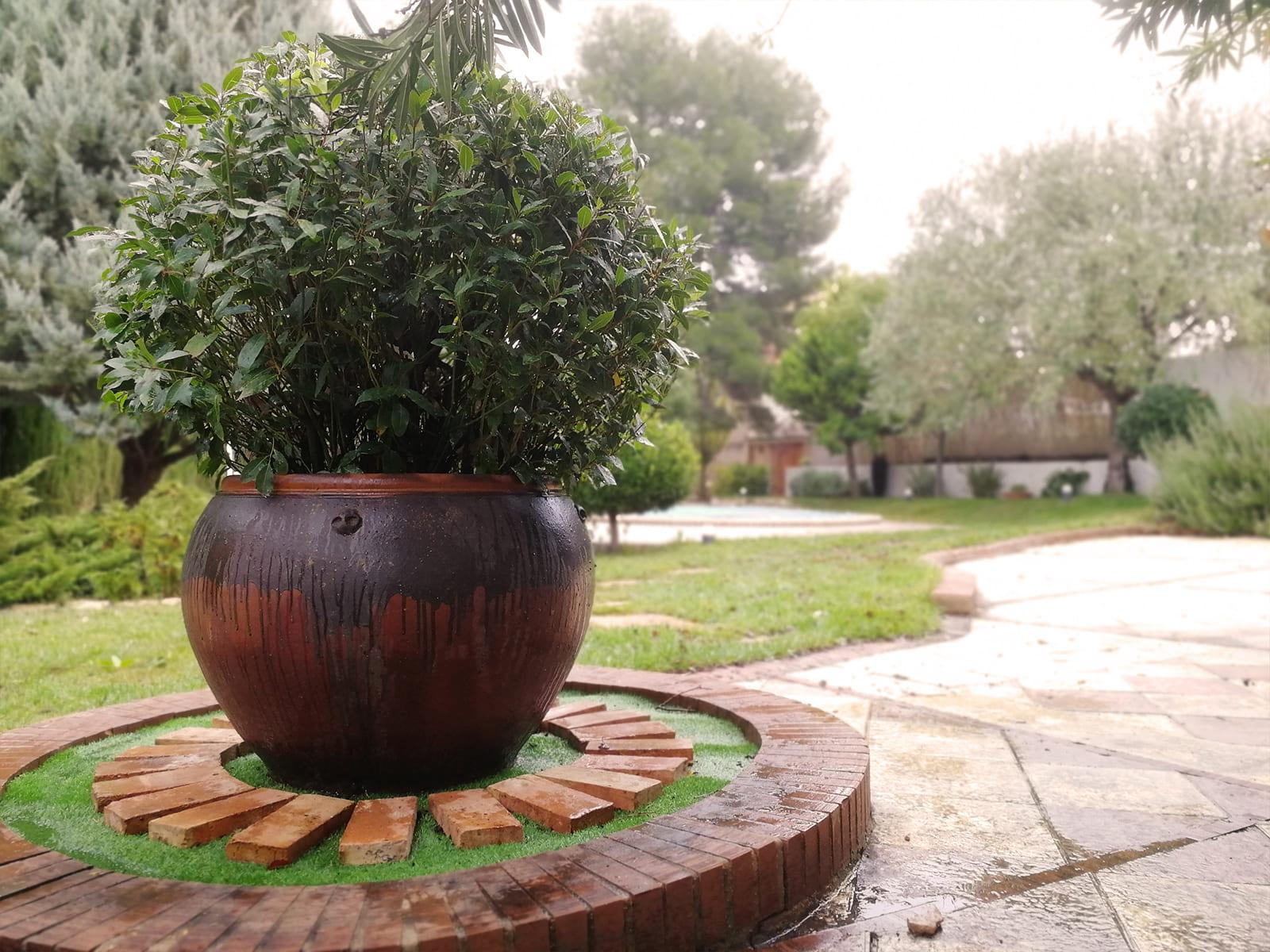 diseño-jardines-zona-piscina-CM-04_HIDROJARDIN-Bañeres