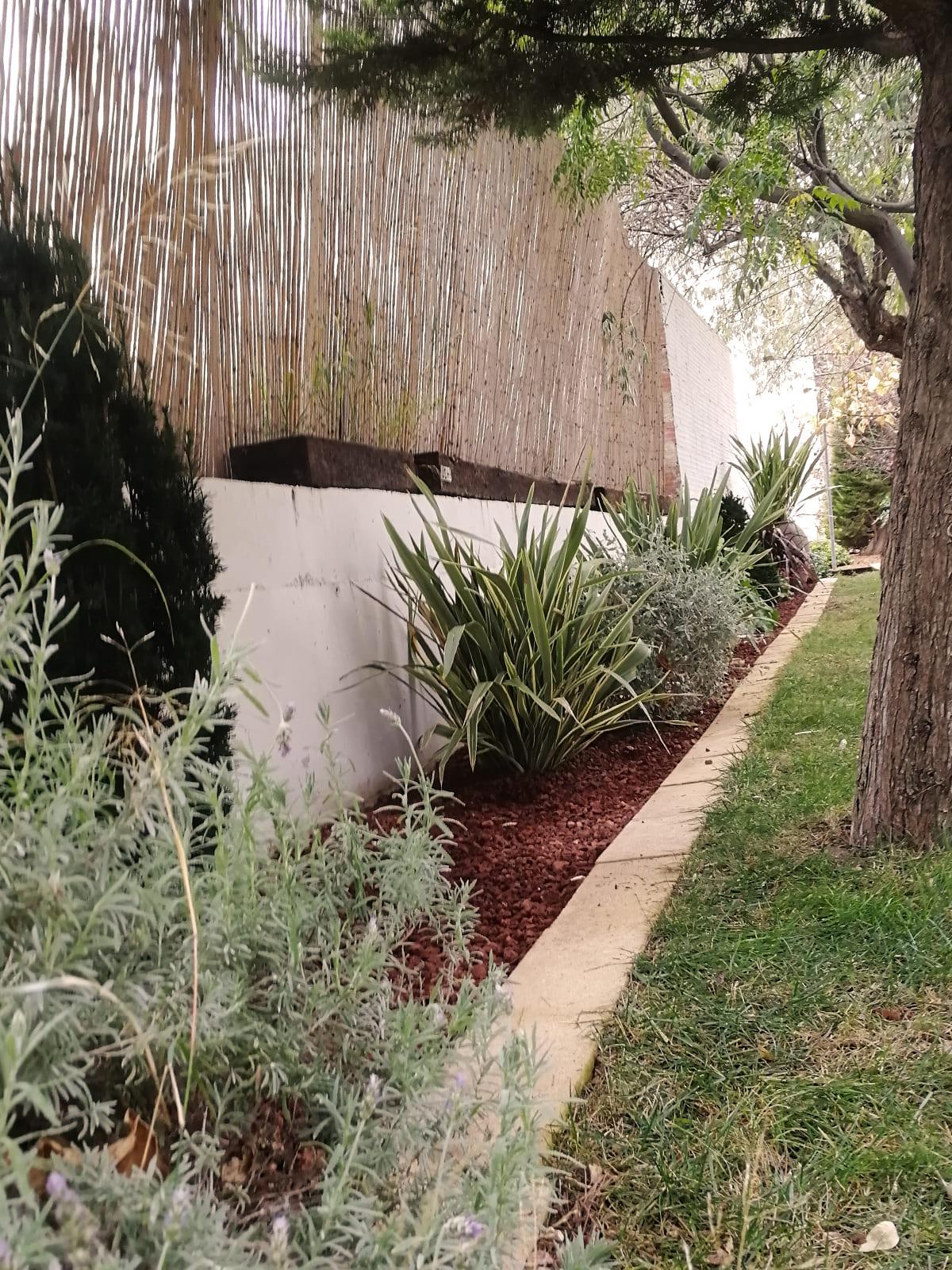 diseño-jardines-zona-piscina-CM-05_HIDROJARDIN-Bañeres