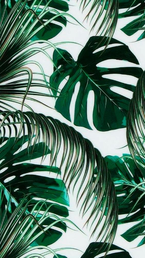 naturaleza-verde-04_HIDROJARDIN-Bañeres