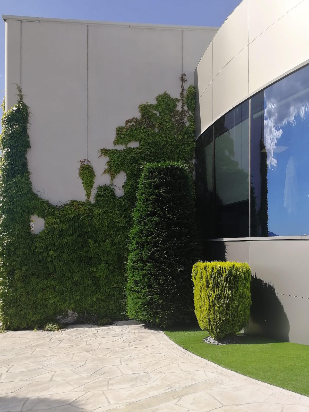 diseño-exteriores-entrada-empresa-FF-05_HIDROJARDIN-Bañeres