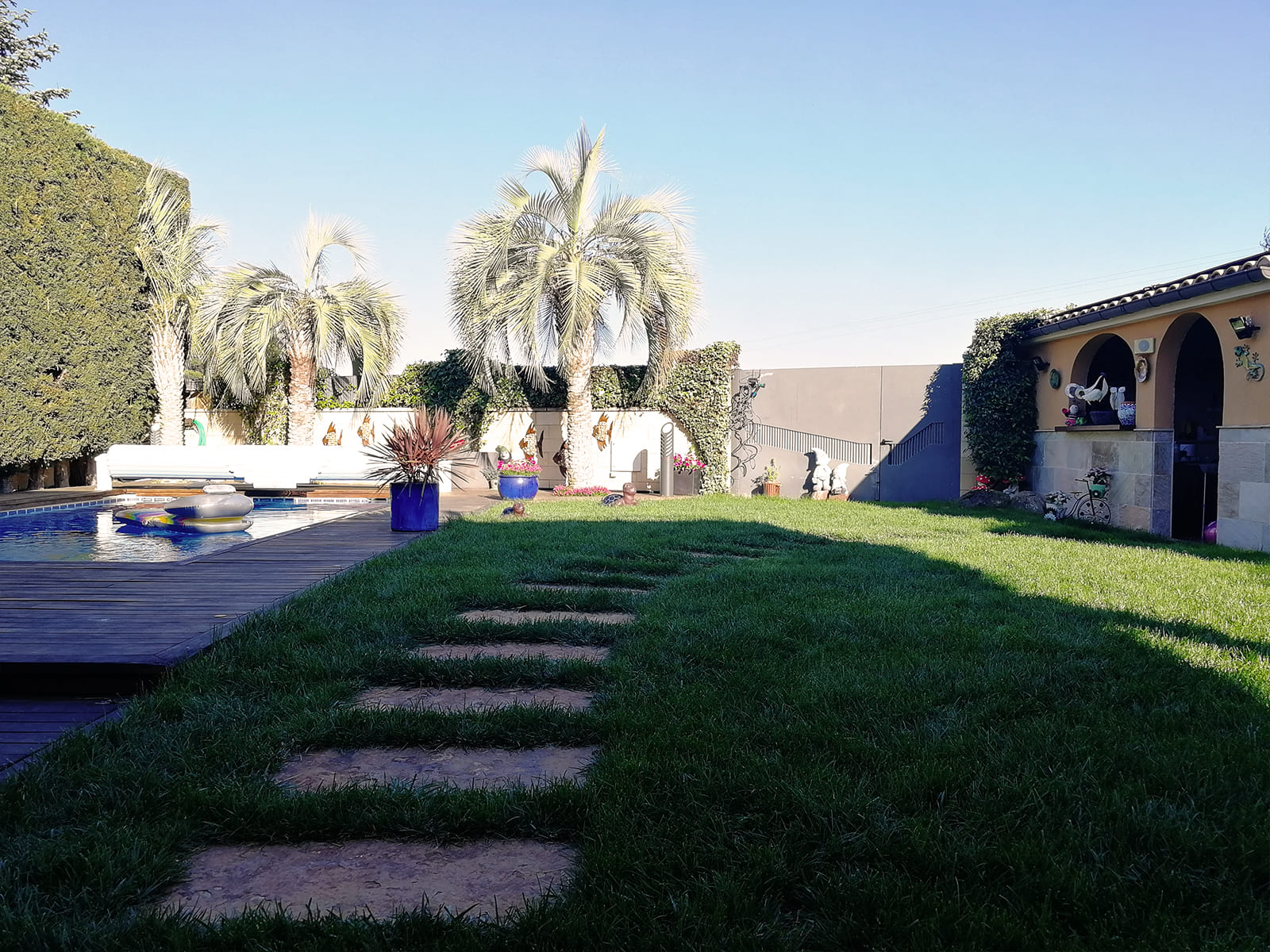 diseño-jardines-palmeras-abeto-LF-10_HIDROJARDIN-Bañeres