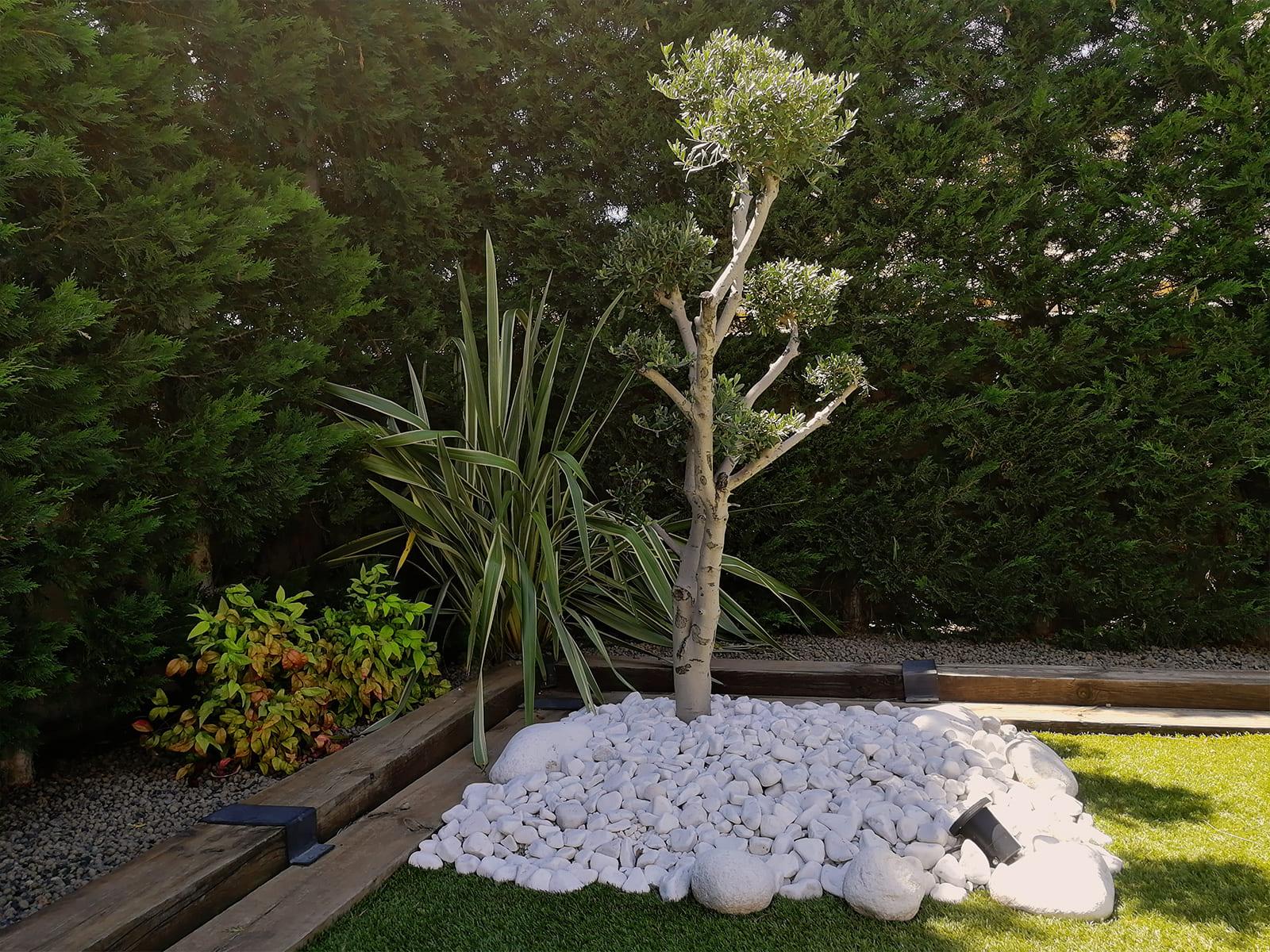 diseño-jardines-piscina-solarium-madera-IJ-17_HIDROJARDIN-Bañeres.jpg