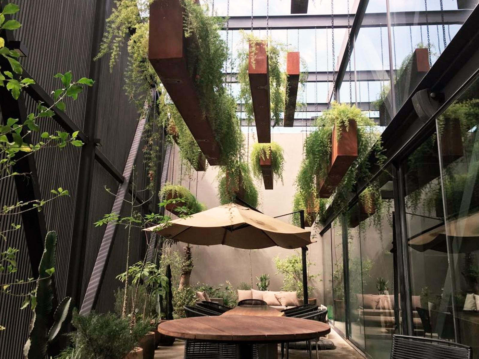 blog-vegetacion-decoracion-bares-restaurantes-19_HIDROJARDIN-Bañeres