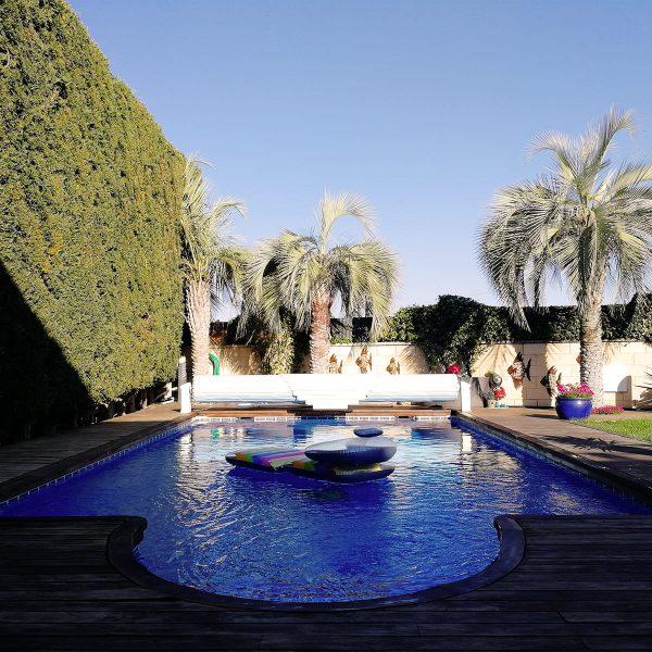 diseño-jardines-palmeras-abeto-LF-11_HIDROJARDIN-Bañeres